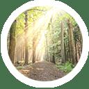 dr-yasmine-saad-madison-park-testimonials